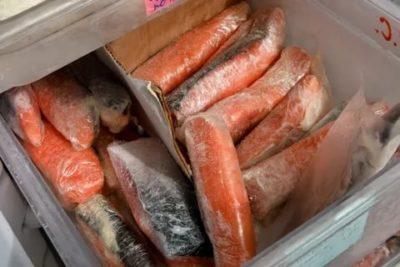 Как правильно заморозить свежую рыбу