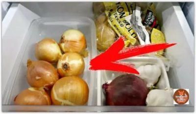 Можно ли репчатый лук хранить в холодильнике