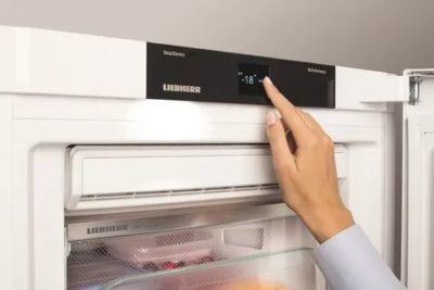 Когда можно включать холодильник после разморозки