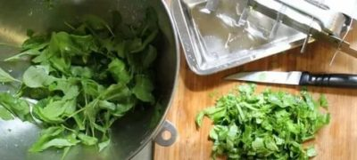 Можно ли заморозить салат руккола