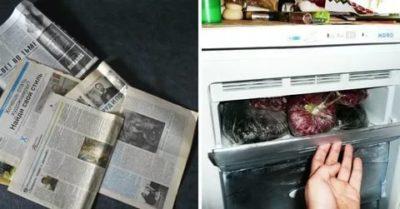 Почему в морозильной камере запах