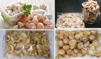 Как долго можно хранить свежие грибы в холодильнике