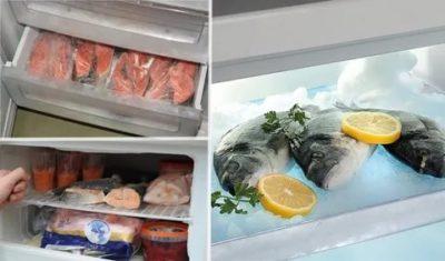 Как сохранить свежую рыбу в холодильнике
