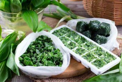 В чем хранить зелень в морозилке