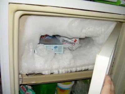 Как часто нужно размораживать холодильник