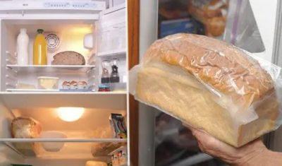 Почему хлеб лучше хранить в холодильнике