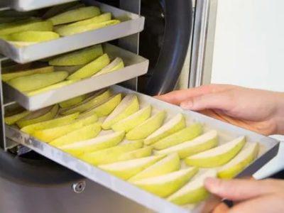 Какие фрукты можно замораживать в морозильной камере