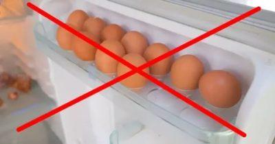 Почему не может хранения яиц в холодильнике
