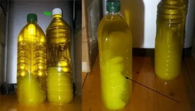 Можно ли заморозить растительное масло