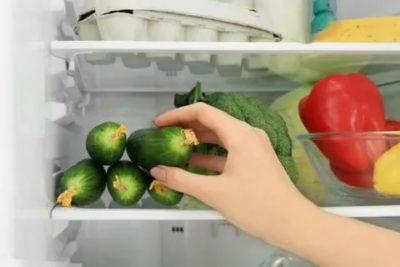 Как правильно хранить свежие огурцы в холодильнике