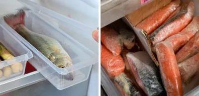 Сколько хранится в холодильнике слабосоленая семга