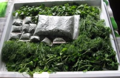 Как можно заморозить зелень на зиму