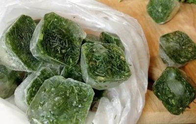 Как правильно заморозить зелень укропа
