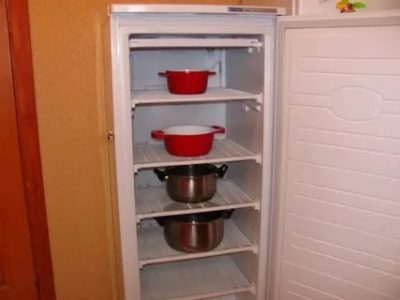 Как часто размораживать холодильник Норд