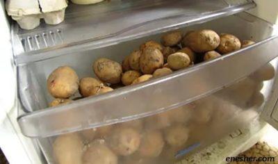 Можно ли хранить молодую картошку в холодильнике