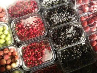 Как правильно заморозить ягоды на зиму