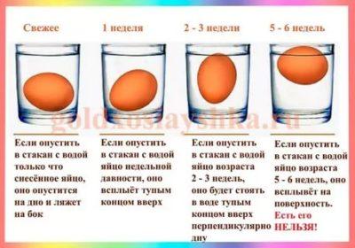 Как долго хранить яйца в холодильнике