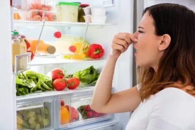 Почему появляется неприятный запах в холодильнике