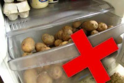 Как долго можно хранить картошку в холодильнике