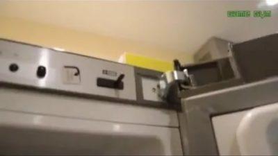 Как перевесить дверь холодильника бош