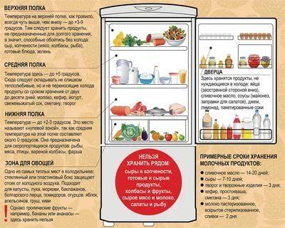 Как правильно хранить в холодильнике