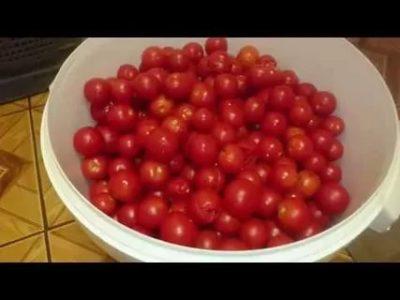 Можно ли замораживать на зиму помидоры черри