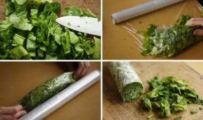 Как заморозить зелень на зиму в холодильнике